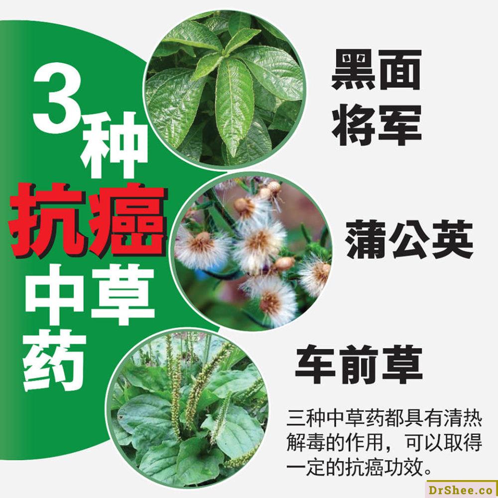 食疗养生 Dr Shee 三种类水果 蔬菜 中草药的抗癌三宝 每天摄取有效防癌 Dr Shee 徐悦馨博士 整体营养自然医学 A04